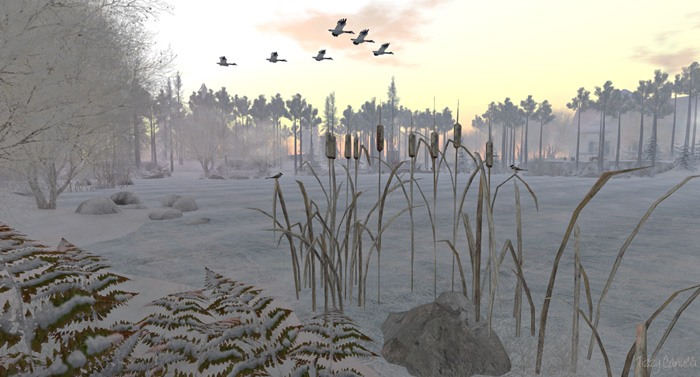 Jacobs Pond in Second Life. Photo by Tizzy Canucci